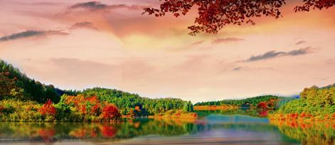 千岛湖3天2夜团建旅游,骑行+肥仔艇,享受自然好时光