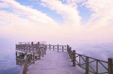 淀山湖畔一日游,龙腾四海+烧烤晚宴+焰火晚会