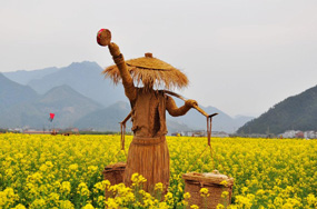 仙居2天1夜游-徜徉油菜花海,一场稻草人相伴的奇妙旅程