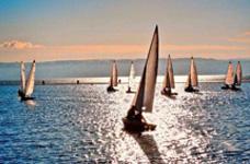 大帆船团队竞速·企业船队比赛团建