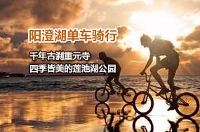 阳澄湖单车骑行 遇见最美人间五月天