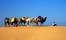 胜拓与您携手穿越库布其沙漠,您准备好了吗,库布其沙漠穿越,中国第七大沙漠,穿沙路线介绍,穿沙基本装备,胜拓